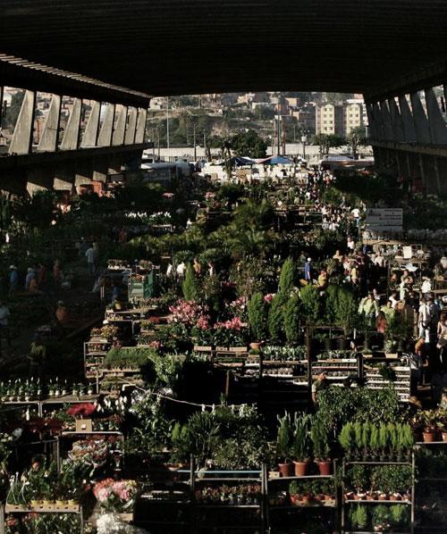 CEAGESP SÃO PAULO